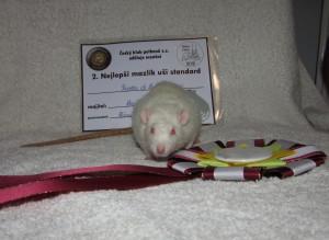 Nicolas of Beautiful rats, Dagmar Šebková